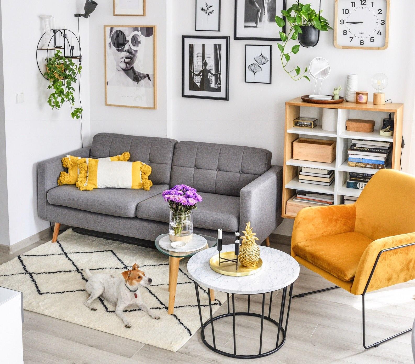 Sofa Brest gris fauteuil Foxe jaune en velours